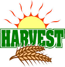 Harvest Tea and social evening