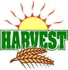 Tasburgh Church Harvest Lunch